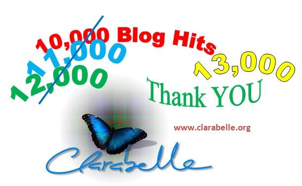 Blog hits 13000