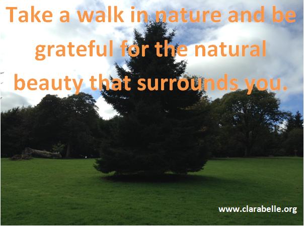 Take a walk in nature