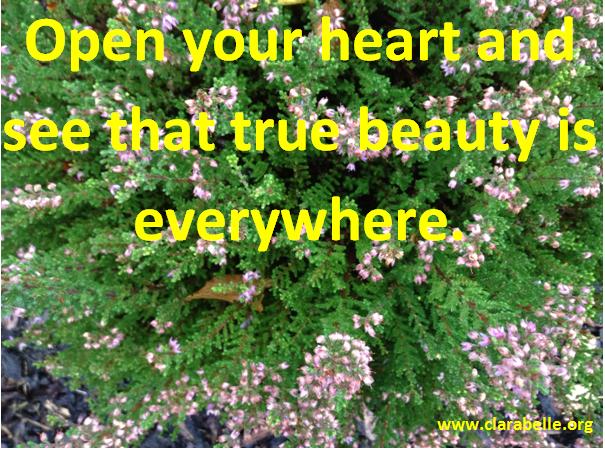 Clarabelle Quotes  71